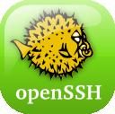 doc_openssh_logo_2